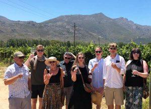 Emma & Marcus familj på vingård under deras bröllopsresa i Sydafrika