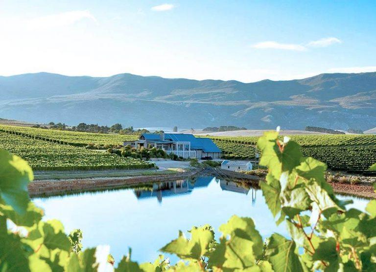 Bo på vingård i Sydafrika